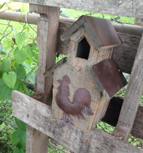birdhouse in backyard